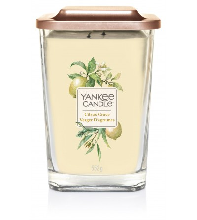 Citrus Grove - Giara Grande Elevation Collection Yankee Candle