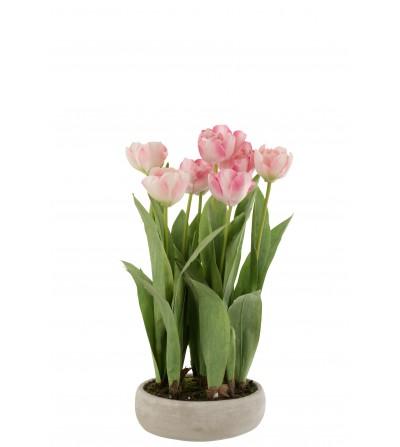 Tulipano + Vaso Cemento Grigio Plastica Rosa/Verde - Jline