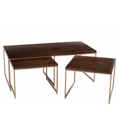 Tavolo piccolo da Salotto Rafi Ferro/Legno Di Mango Oro/Marrone Scuro - JLine